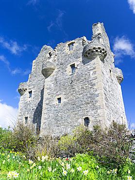 Scalloway Castle, landmark of Scalloway, the former capital of the Shetland Islands.  Europe, Great Britain, Scotland, Northern Isles, Shetland, May