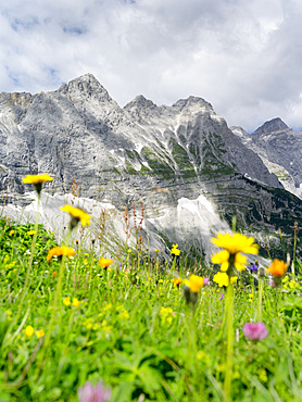 Karwendel Mountain Range between Johannestal and Birkkar-Spitze, the highest peak of the Karwendel Mts., Austria.   The Karwendel limestone mountain range is the largest range in the eastern alps. Large parts of the Karwendel are protected and a popular destination for tourists, hikers and climbers. Europe, Central Europe, Austria, Tyrol, July
