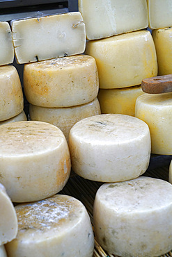 Traditional local cheese, weekly street food market, Vigevano, Lombardy, Italy, Europe