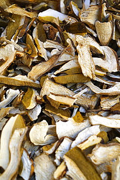 Dried mushroom, weekly street food market, Vigevano, Lombardy, Italy, Europe