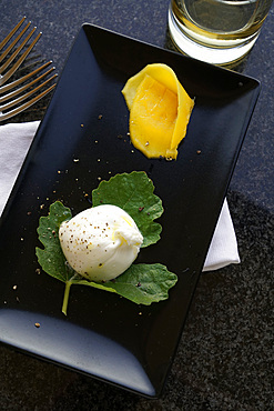 Burratina cheese and mango slice appetizer