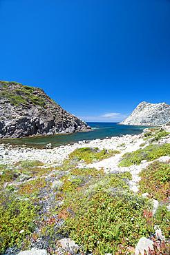 Cala Fico, Carloforte, Island of San Pietro, Sardinia, Italy, Europe