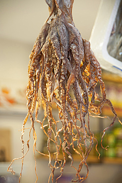 Dried Octopus, Mercado Central, plaza Mercato, Valencia, Spain, Europe
