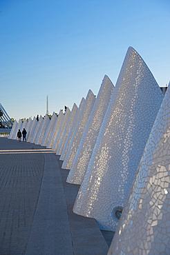 Palau de les arts Reina Sofia, Ciutat de les Arts i les Ciències, Valencia, Spain, Europe