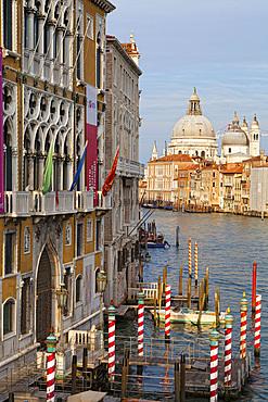 Punta della Dogana, La Salute church, Venice, Veneto, Italy, Europe.