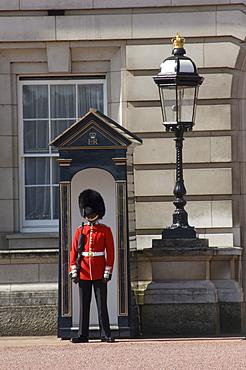 Sentry duty at Buckingham Palace, London, England, United Kingdom, Europe