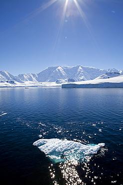 Glacier Bay, Port Lockroy, Antarctic Peninsula, Antarctica, Polar Regions