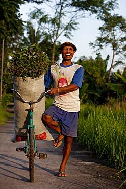 Farmer beside rice field, Kerobokan, Bali, Indonesia, Southeast Asia, Asia