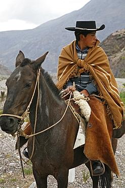 Portrait of a northern gaucho riding a horse near Purmamarca, Quebrada de Humahuaca, Jujuy province, Argentina, South America