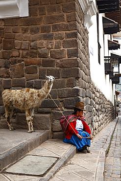 Quechua woman with llama along an Inca wall in San Blas neighborhood, Cuzco, Peru, South America