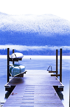 Lake Quinault, Olympic National Park, UNESCO World Heritage Site, Washington State, United States of America (U.S.A.), North America