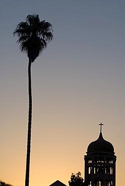 Silhouette of palm tree next to church, La Serena, Chile, South America