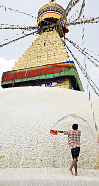 Repainting Boudha, the Buddhist stupa at Boudhanath (Bodhanath) with a coat of limewash, UNESCO World Heritage Site, Kathmandu, Nepal, Asia