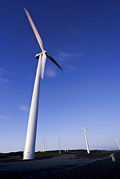 Windmills on a windfarm overlooking Palmerston North, Manawatu, North Island, New Zealand, Pacific