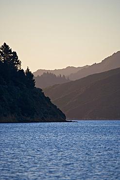 Marlborough Sounds, South Island, New Zealand, Pacific