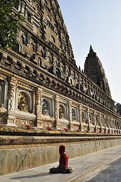 Pilgrim, Mahabodhi Temple, UNESCO World Heritage Site, Bodh Gaya (Bodhgaya), Gaya District, Bihar, India, Asia