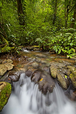 Waterfall, Semuc Champey, Guatemala, Central America