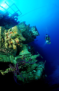 Scuba diver and ship wreck Theo´s wreck, Bahamas, Caribbean Sea, Grand Bahama