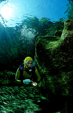 Scuba diving in a freshwater river, scuba diver, traun, Austria, Steiermark, Gruener See