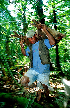 Native hunter with wild pig, Papua New Guinea, New Britain, Hoskins