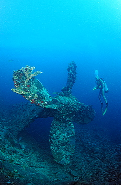 Scuba diver and propellor of Umbria shipwreck, Wingate Reef, Sudan, Red Sea, Africa