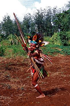 Huli wigman, archer, Tari, Huli, Highlands, Papua New Guinea, Pacific