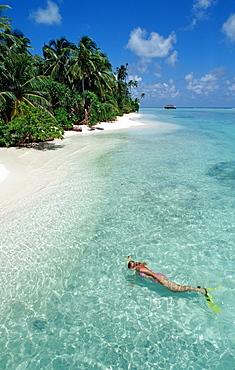 Snorkeler at Maldives, Maldives, Indian Ocean, Medhufushi, Meemu Atoll