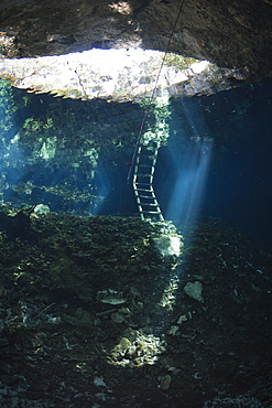 Entrance of Gran Cenote, Tulum, Yucatan Peninsula, Mexico