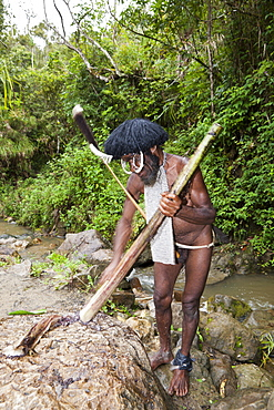 Dani chief showing traditional salt extraction at Jiwika Salt Spring, Baliem Valley, West Papua, Indonesia, Southeast Asia, Asia