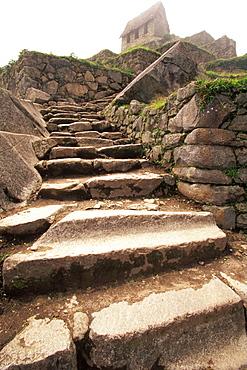 Machu Picchu Inca trail through terraced fields below the Hut of the Caretaker, above the city, Highlands, Peru
