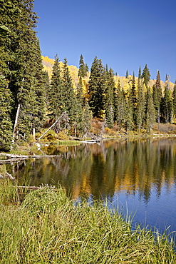 Silver Lake in the fall, Wasatch-Cache National Forest, Utah, United States of America, North America