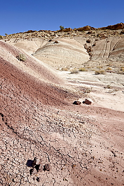 Badlands with maroon color, Capitol Reef National Park, Utah, United States of America, North America