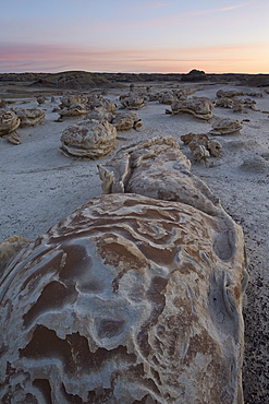 Eroded boulder at the Egg Factory, Bisti Wilderness, New Mexico, United States of America, North America