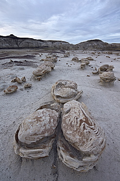 Eroded boulders at the Egg Factory, Bisti Wilderness, New Mexico, United States of America, North America