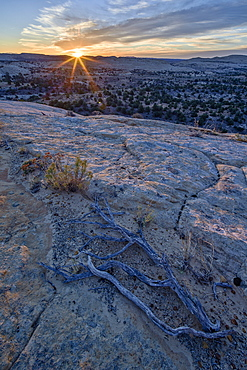 Sunrise from atop a sandstone hill, Grand Staircase-Escalante National Monument, Utah, United States of America, North America