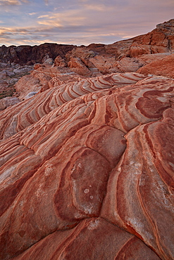 Sandstone forms at dawn, Valley Of Fire State Park, Nevada, United States of America, North America
