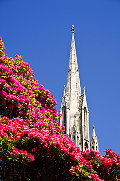 The First Church, Dunedin, Otago, South Island, New Zealand, Pacific