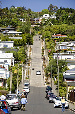 World's steepest street, Baldwin Street, Dunedin, Otago, South Island, New Zealand, Pacific