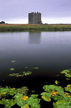 Threave Castle, fortress of the Douglas family dating from the 14th century, on an island of the Dee river, near Castle Douglas, Dumfries & Galloway, Scotland, United Kingdom, Europe