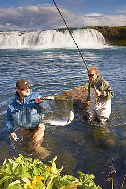 Salmon fly fishing in Iceland, Polar Regions