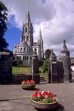 St. Finbarr's Cathedral, neogothic style, dating from 19th century, Cork, County Cork, Munster, Republic of Ireland, Europe