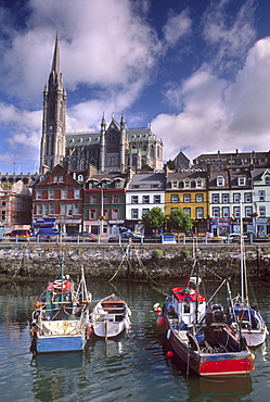 Cobh Harbour and St. Colman's Cathedral, Cobh (Cork), County Cork, Munster, Republic of Ireland, Europe