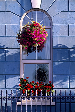 Window of an hotel at Cobh (Cork), County Cork, Munster, Republic of Ireland, Europe