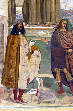 Frescoes in cloister by High Renaissance painter Il Sodoma (Giovanni Antonio Bazzi) painted between 1505 and 1508, of the life of St. Benedict (San Benedetto), self portrait of the artist posing with his badgers, Monte Oliveto Maggiore Abbey, Tuscany, Italy, Europe