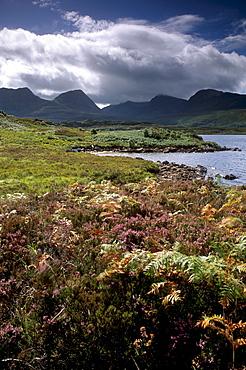 Inverpolly Nature Reserve, Sutherland, Highland region, Scotland, United Kingdom, Europe