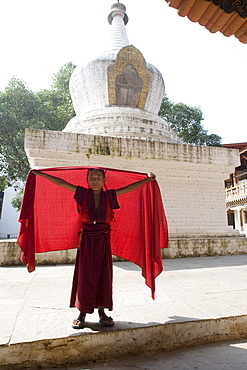 Young Buddhist monk, Punakha Dzong, Punakha, Bhutan, Asia