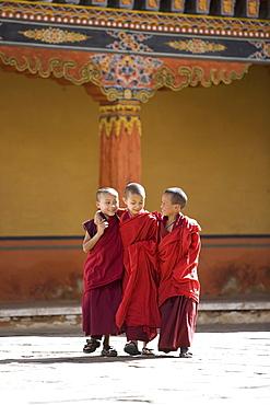 Young Buddhist monks, Paro Dzong, Paro, Bhutan, Asia