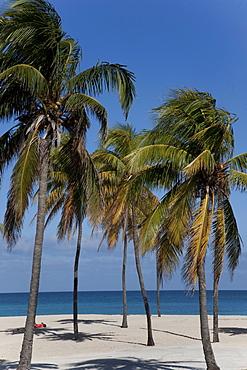 Playa del Este, Havana, Cuba, West Indies, Central America