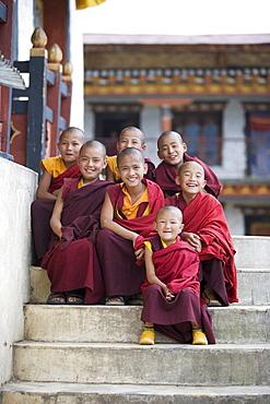 Group of young Buddhist monks, Karchu Dratsang Monastery, Jankar, Bumthang, Bhutan, Asia