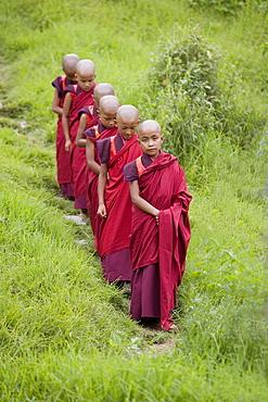 Buddhist monks from Karchu Dratsang Monastery, Jankar, Bumthang, Bhutan, Asia